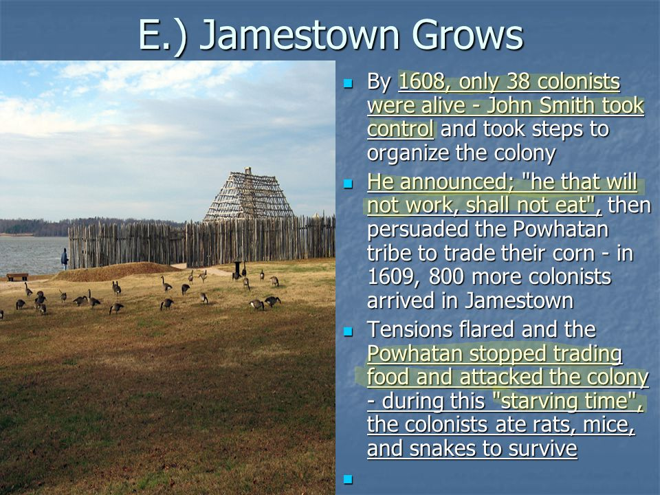 E.) Jamestown Grows By 1608, only 38 colonists were alive - John Smith took control and took steps to organize the colony.