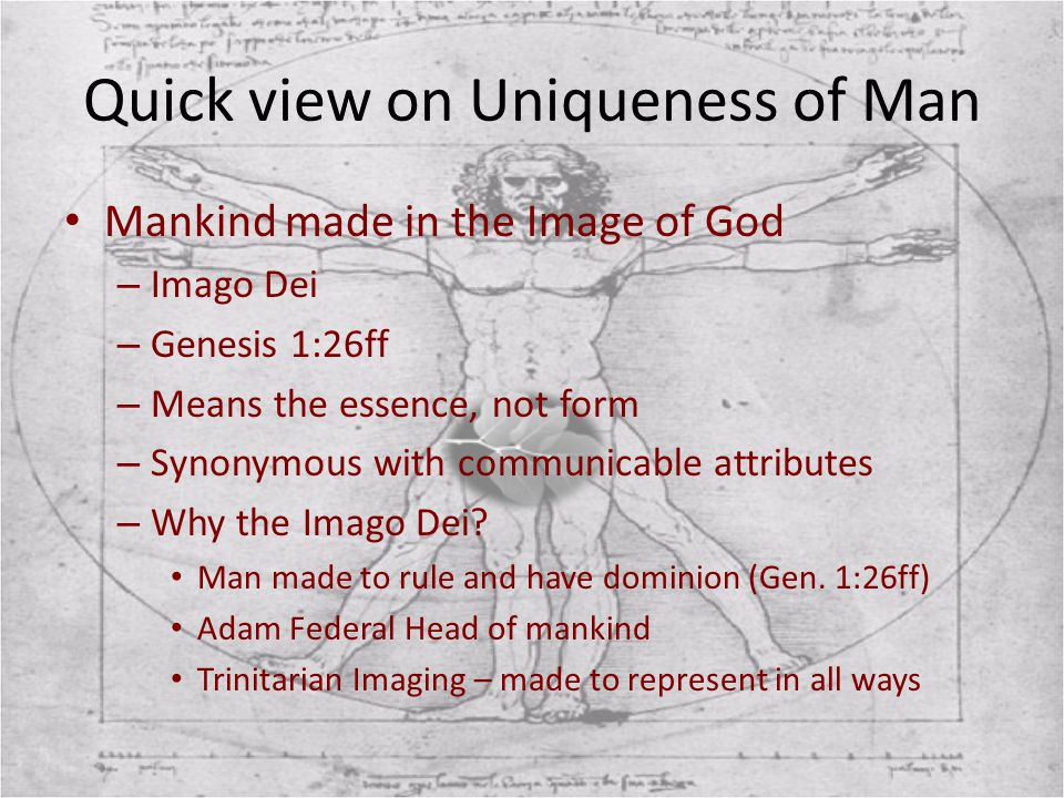 Quick view on Uniqueness of Man