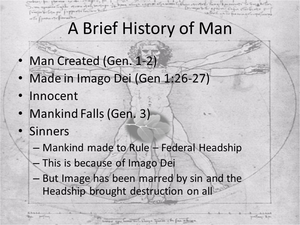 A Brief History of Man Man Created (Gen. 1-2)