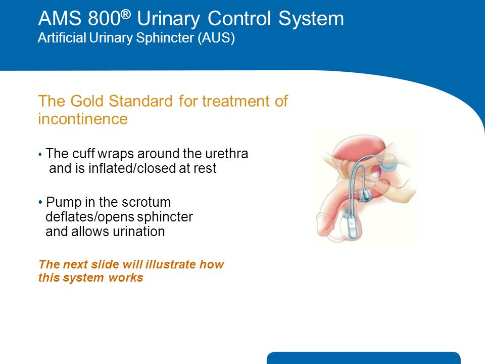 AMS 800® Urinary Control System