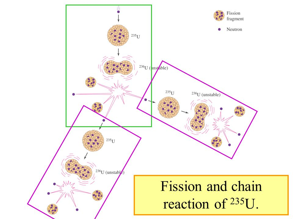 Fission and chain reaction of 235U.