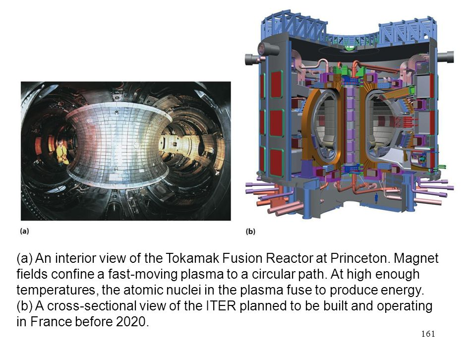 (a) An interior view of the Tokamak Fusion Reactor at Princeton