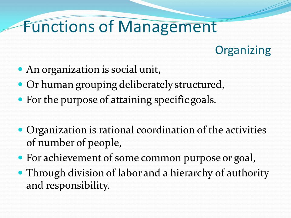 Functions of Management Organizing