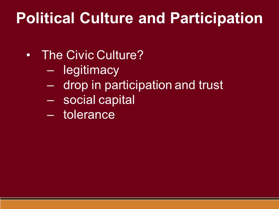 Political Culture and Participation