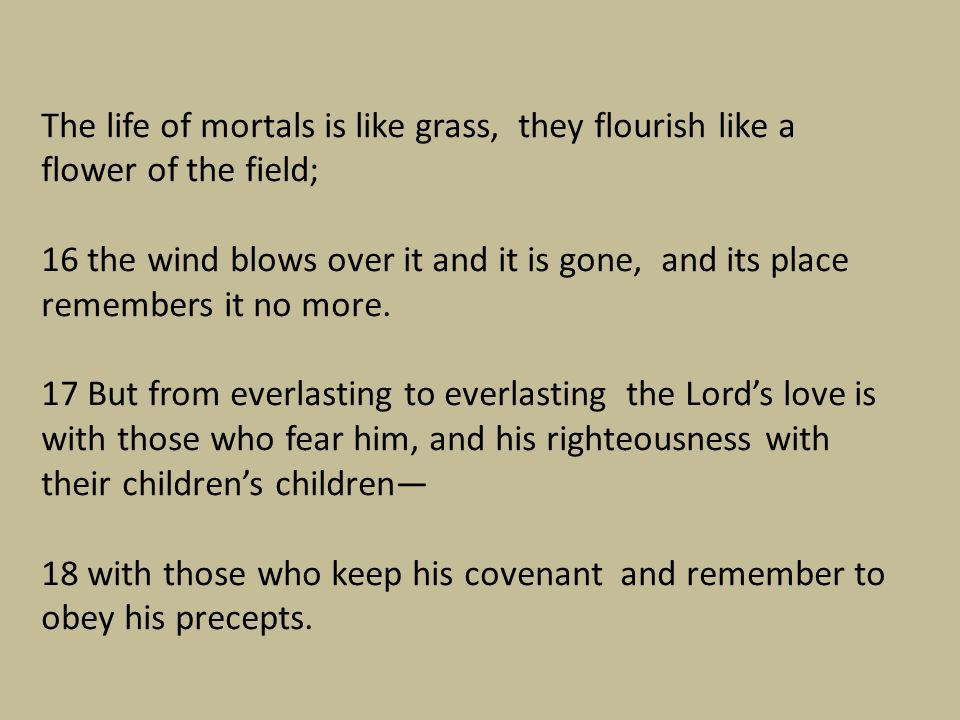 The life of mortals is like grass, they flourish like a flower of the field;
