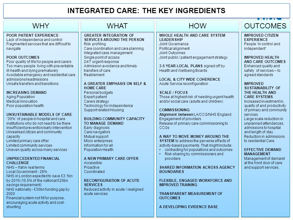 INTEGRATED CARE: THE KEY INGREDIENTS