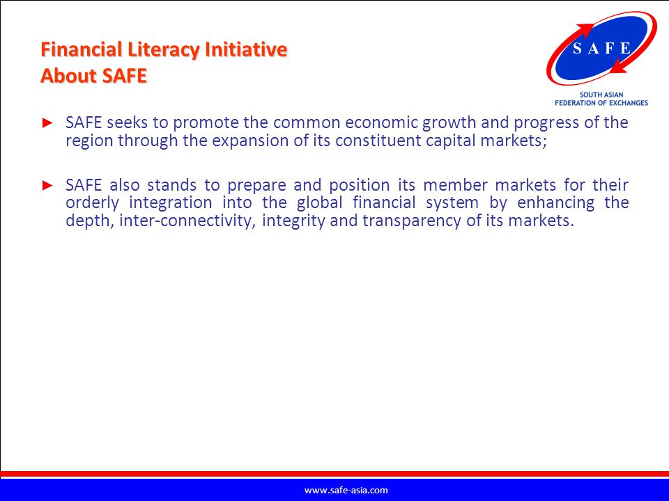 Financial Literacy Initiative About SAFE