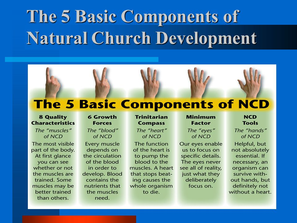 The 5 Basic Components of Natural Church Development