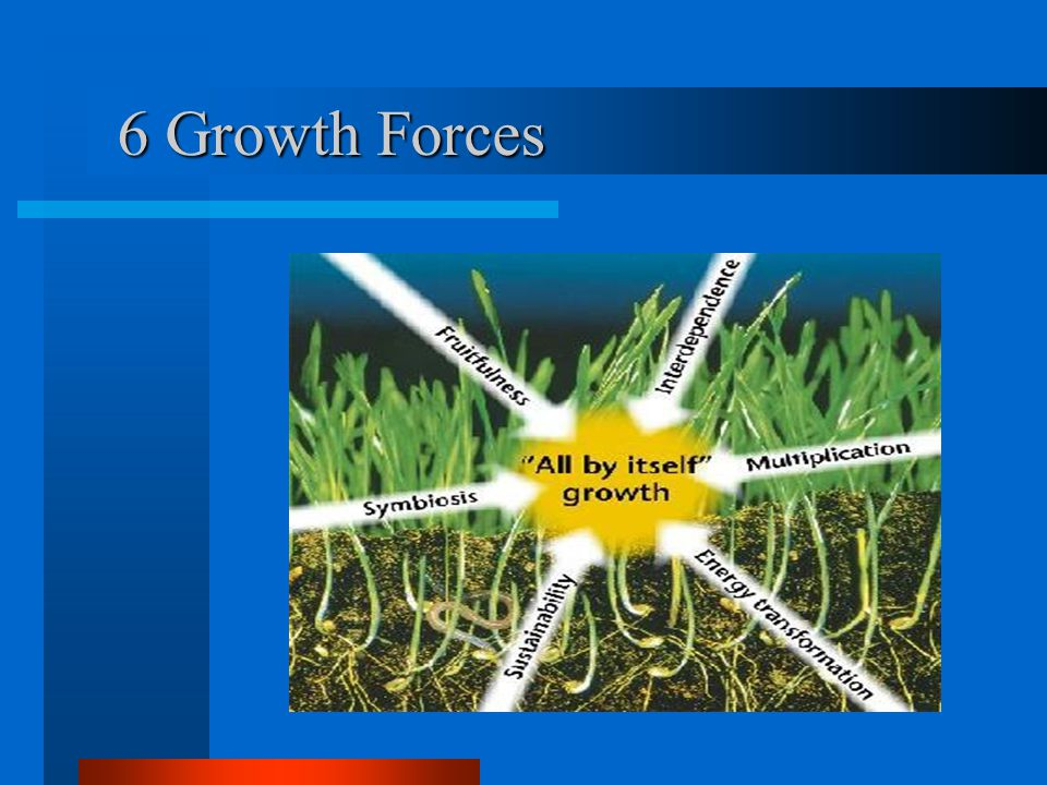 6 Growth Forces