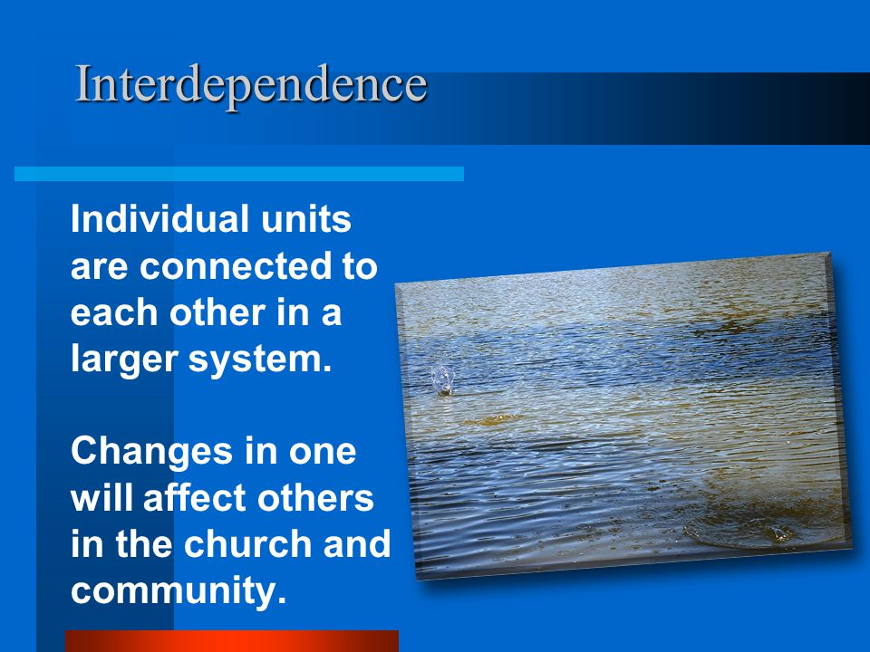 Interdependence Individual units are connected to each other in a larger system.