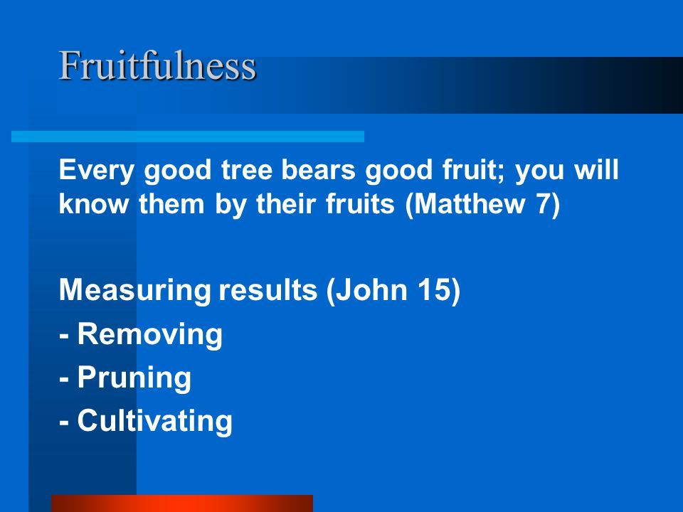 Fruitfulness Measuring results (John 15) - Removing - Pruning