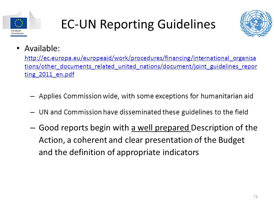 EC-UN Reporting Guidelines