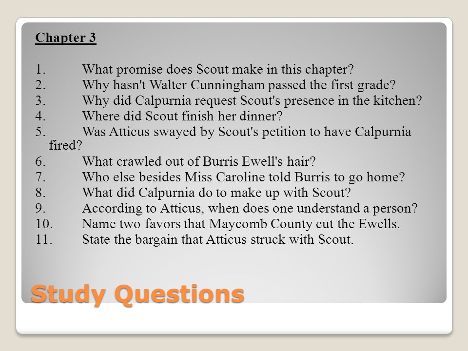 Study Questions Chapter 3