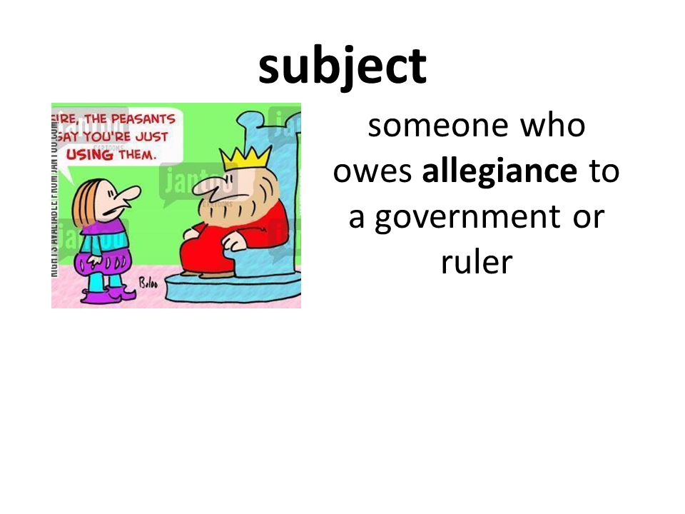 someone who owes allegiance to a government or ruler
