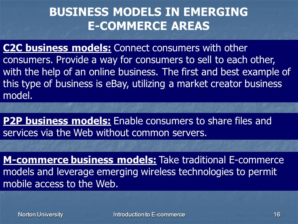 BUSINESS MODELS IN EMERGING E-COMMERCE AREAS