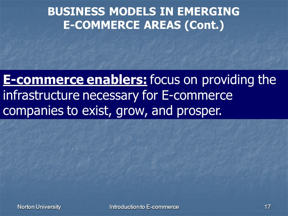BUSINESS MODELS IN EMERGING E-COMMERCE AREAS (Cont.)