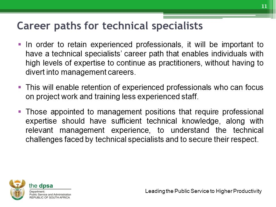 Career paths for technical specialists