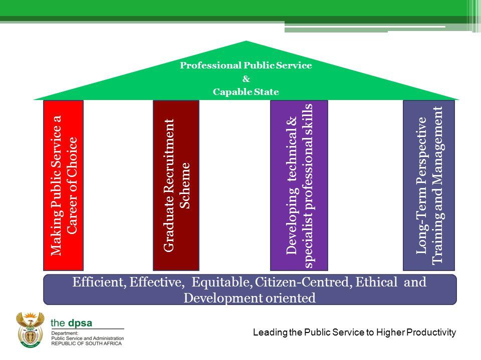 Professional Public Service