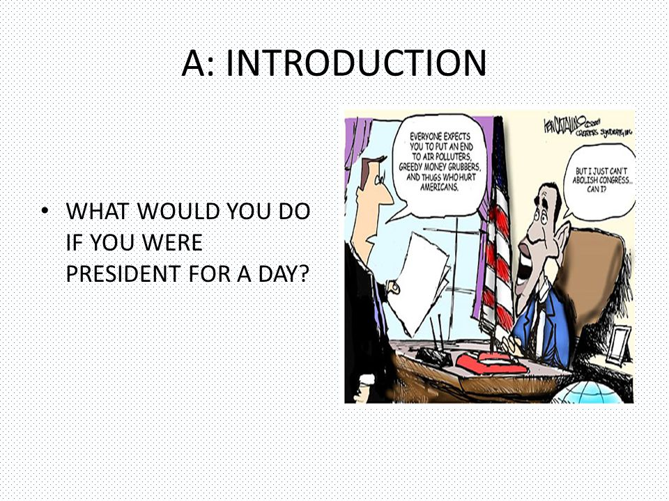 A: INTRODUCTION WHAT WOULD YOU DO IF YOU WERE PRESIDENT FOR A DAY