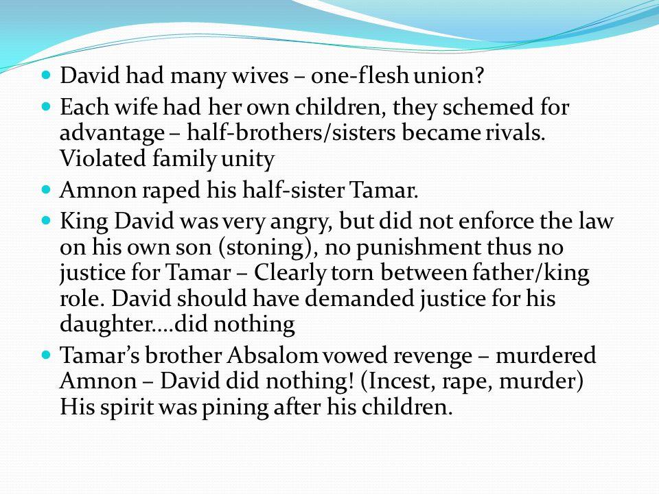 David had many wives – one-flesh union