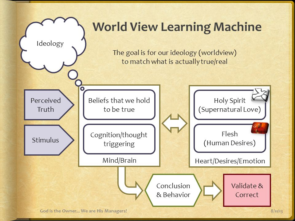 World View Learning Machine