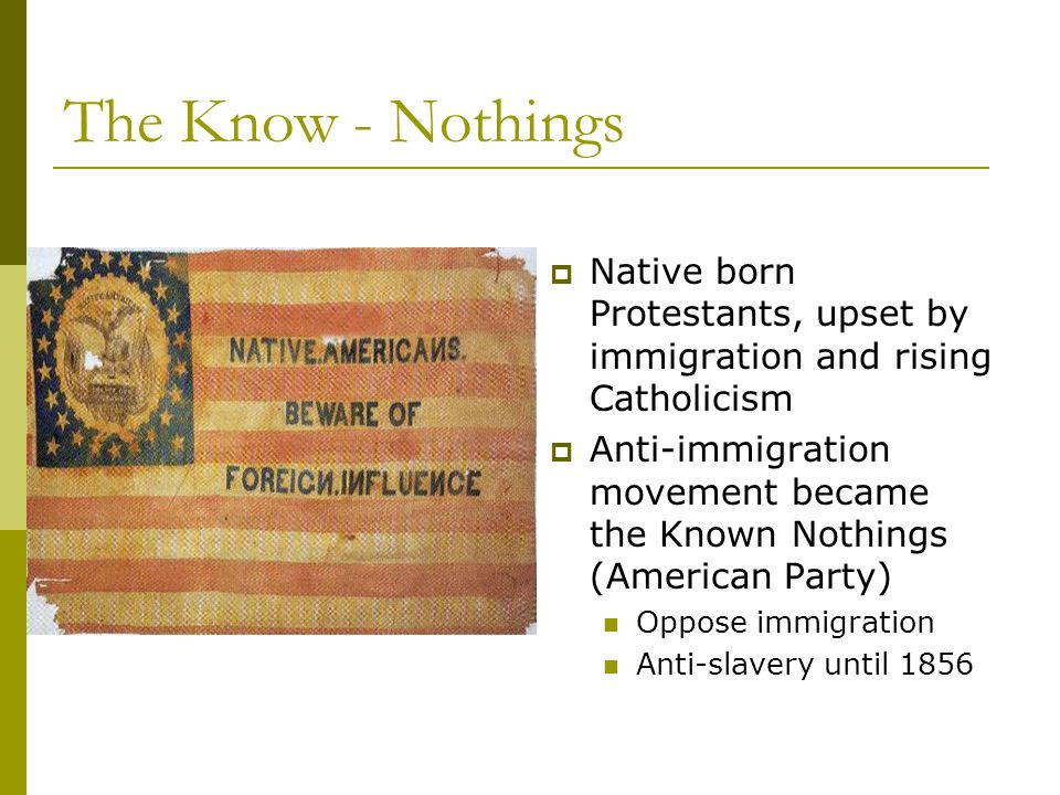 The Know - Nothings Native born Protestants, upset by immigration and rising Catholicism.