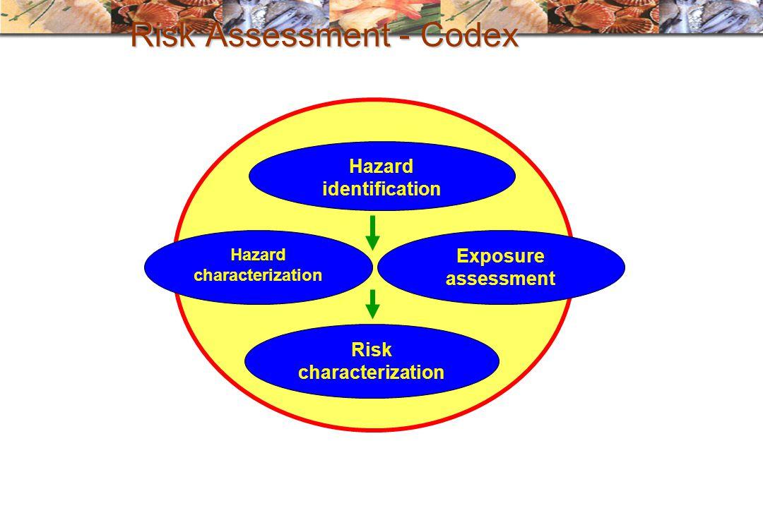 Risk Assessment - Codex