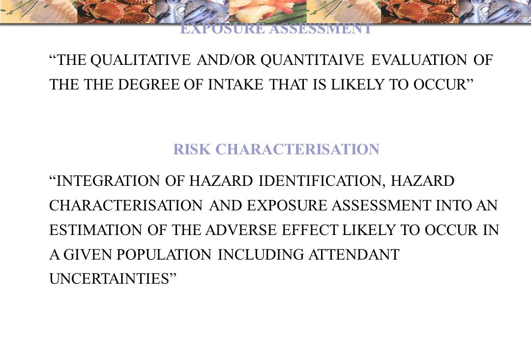 RISK CHARACTERISATION