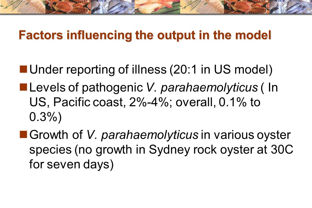 Factors influencing the output in the model