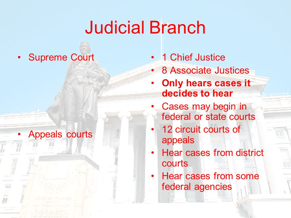Judicial Branch Supreme Court Appeals courts 1 Chief Justice