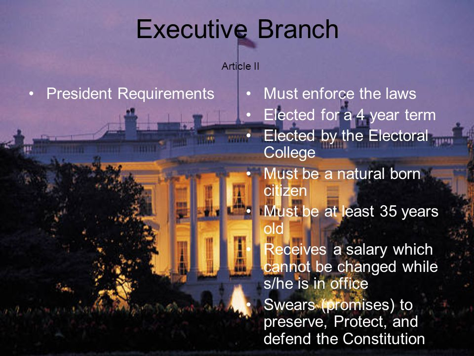 Executive Branch Article II