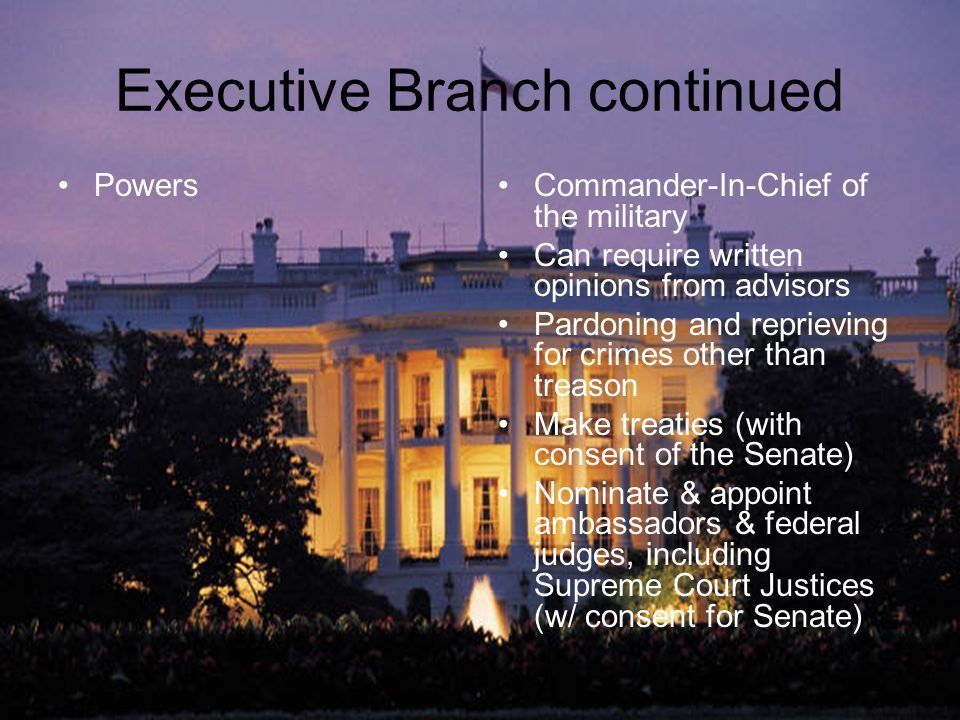 Executive Branch continued