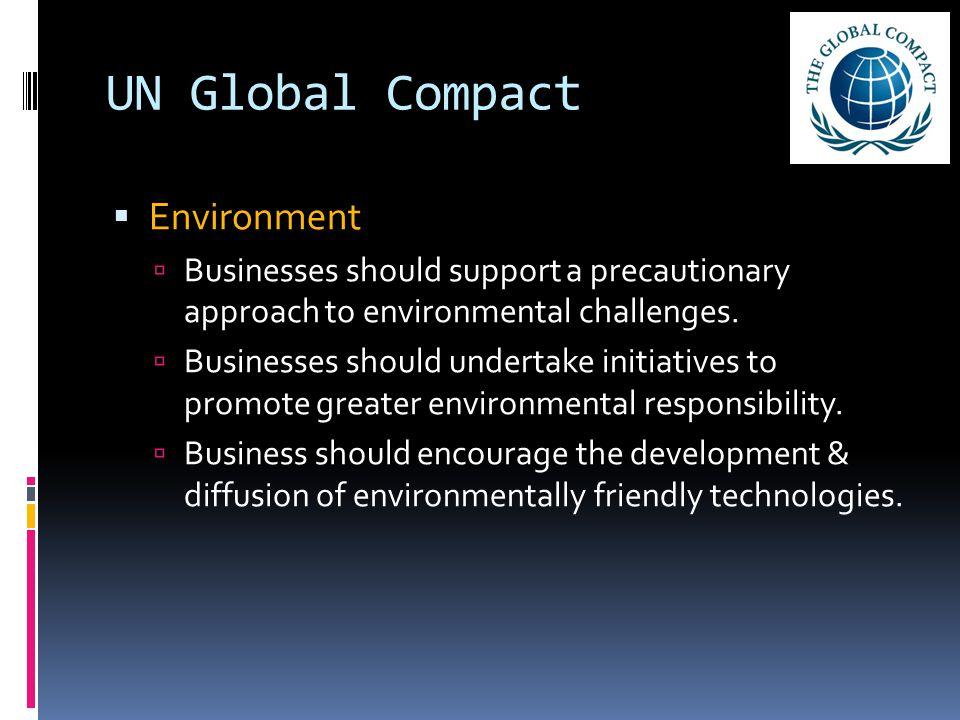 UN Global Compact Environment