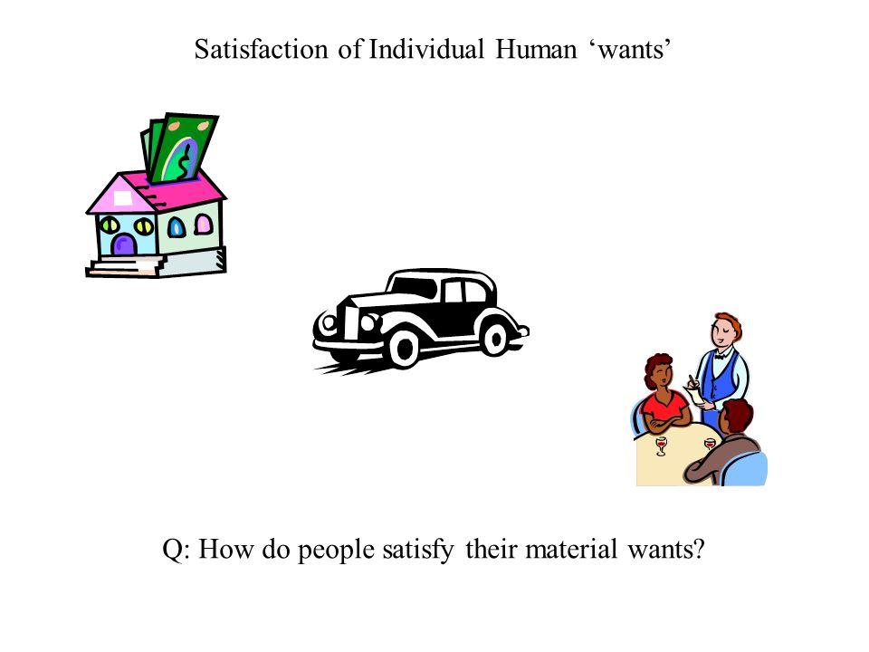 Satisfaction of Individual Human 'wants'