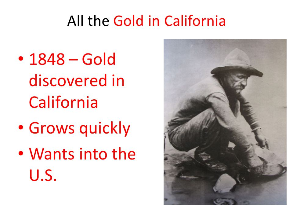 All the Gold in California