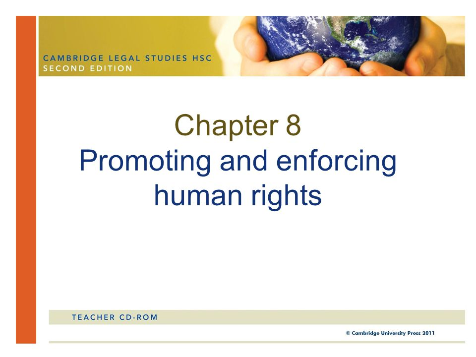 Chapter 8 Promoting and enforcing human rights