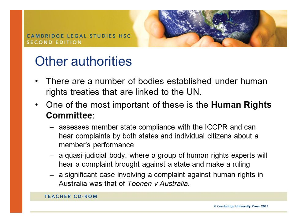 Other authorities There are a number of bodies established under human rights treaties that are linked to the UN.