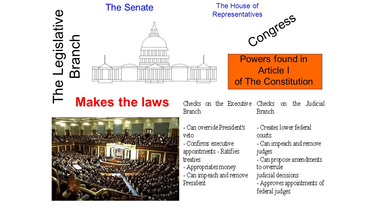 senate vs house of representatives similarities between the house and the senate essay A comparison between the house and the senate the tools you need to write a quality essay these houses are the us house of representatives and the us senate.