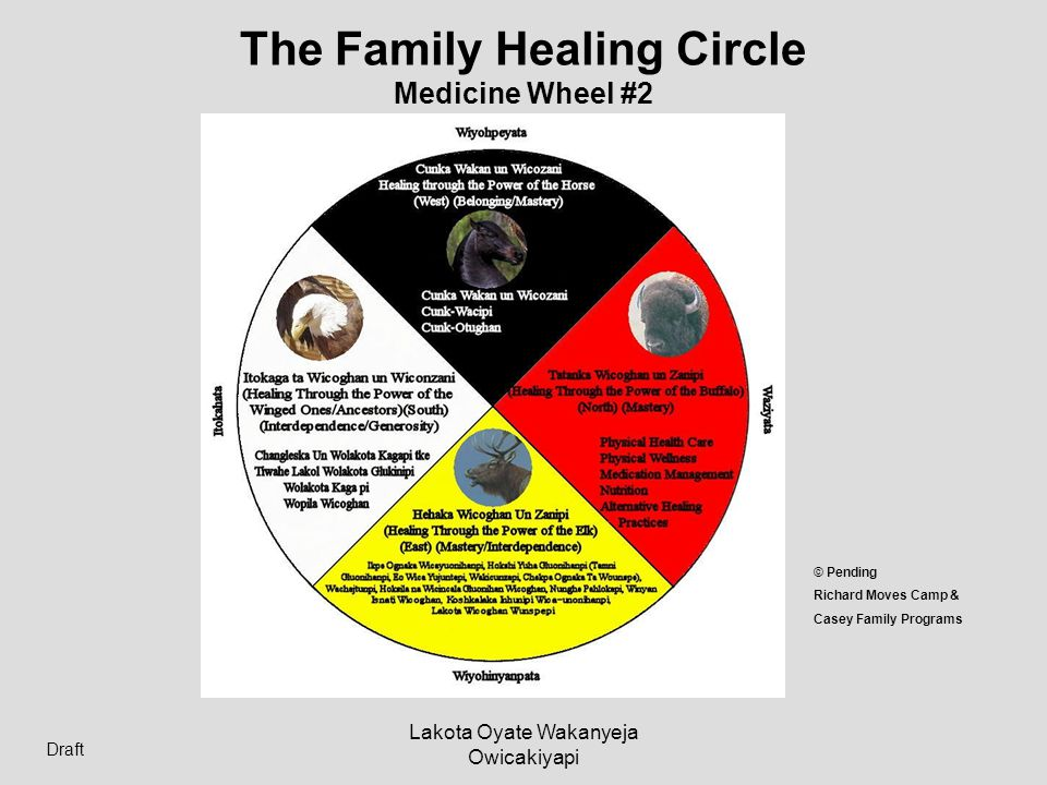 The Family Healing Circle Medicine Wheel #2