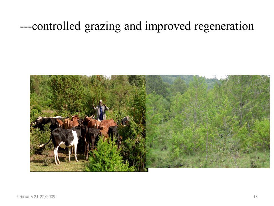 ---controlled grazing and improved regeneration