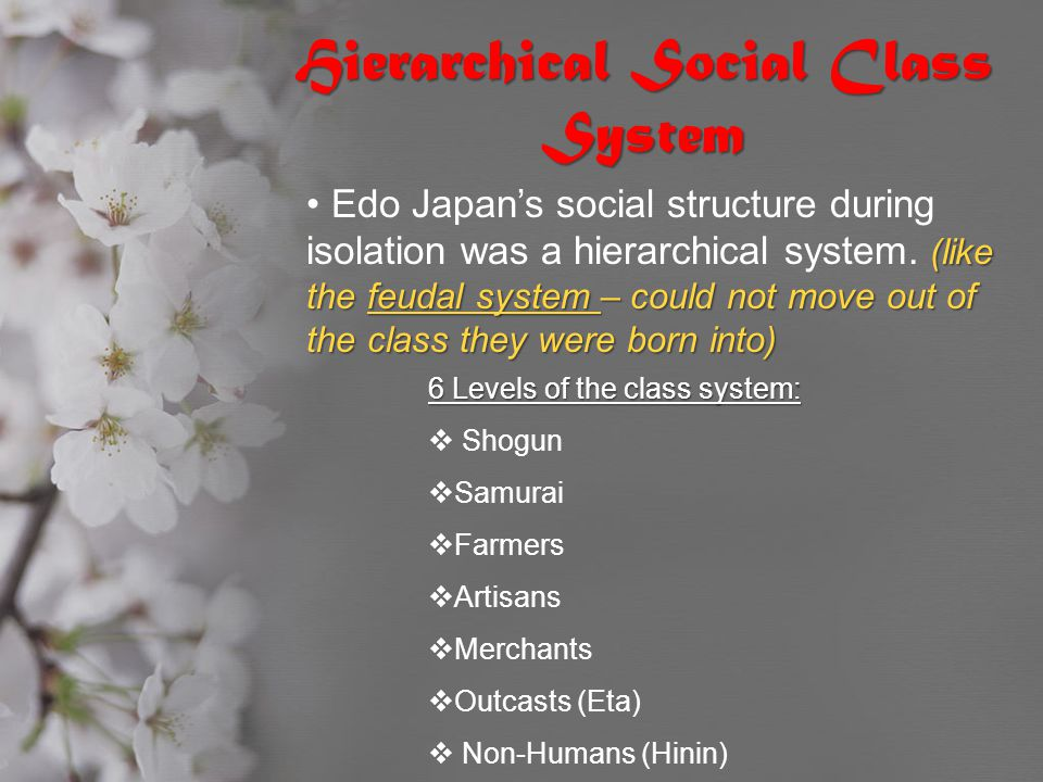 Hierarchical Social Class System