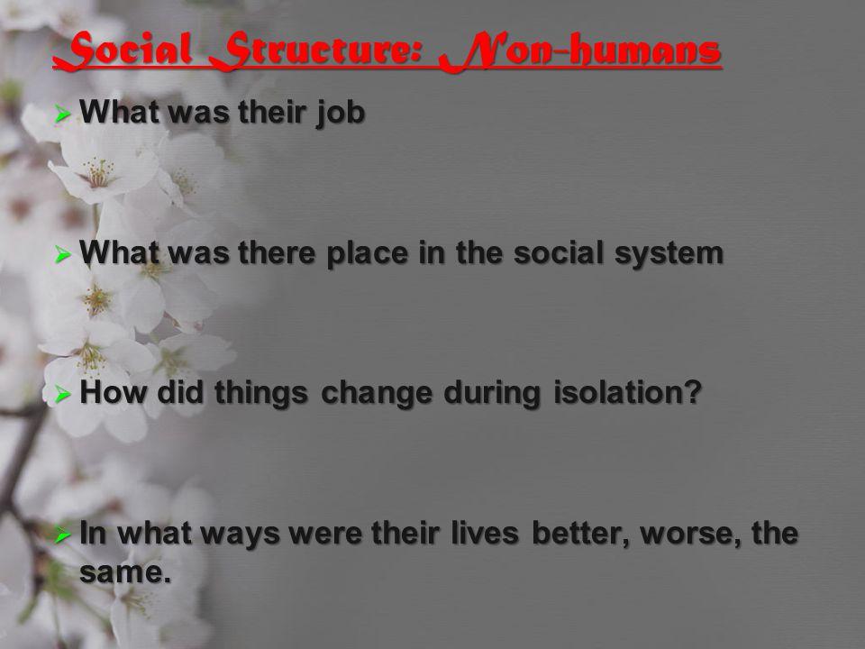 Social Structure: Non-humans