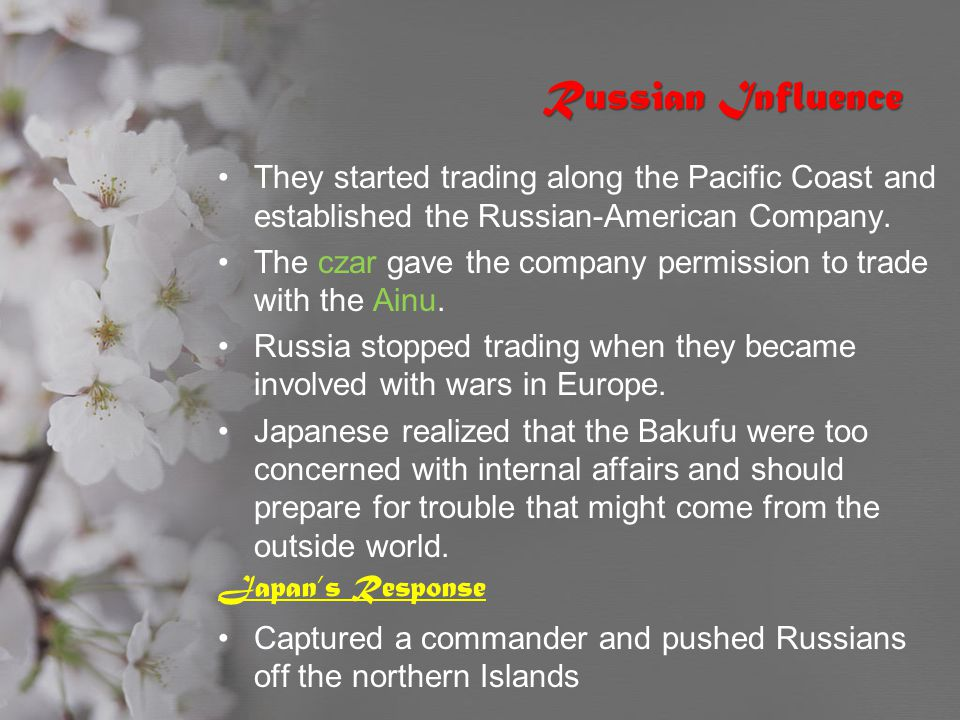 Russian Influence They started trading along the Pacific Coast and established the Russian-American Company.