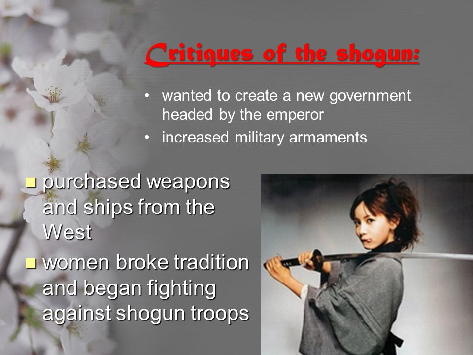 Critiques of the shogun: