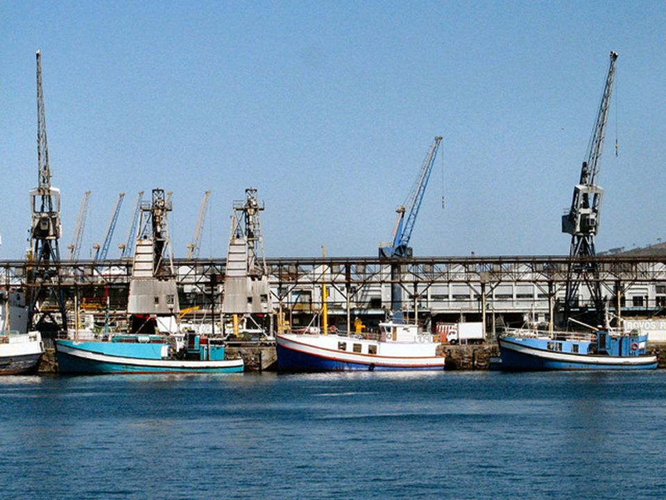 Fishing vessels in CT harbour