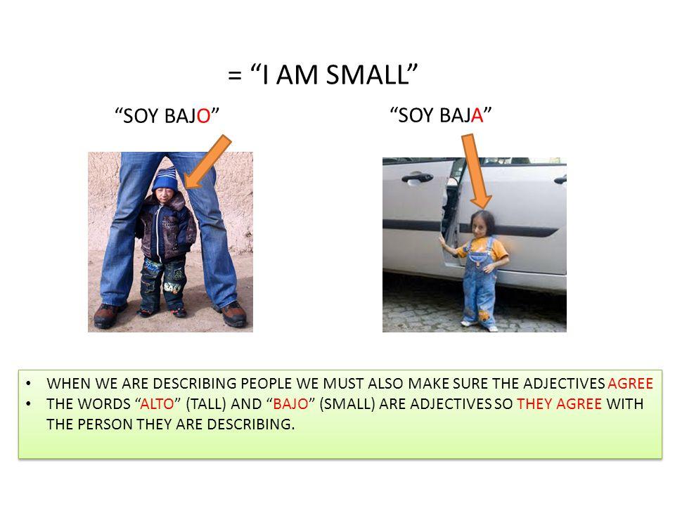 = I AM SMALL SOY BAJO SOY BAJA