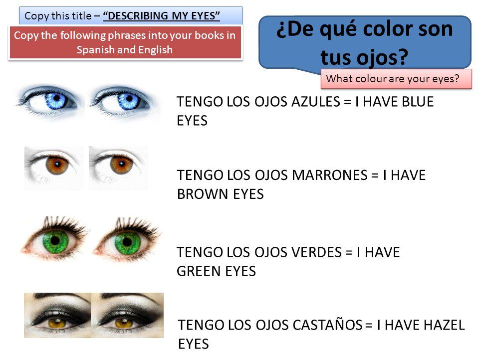 ¿De qué color son tus ojos