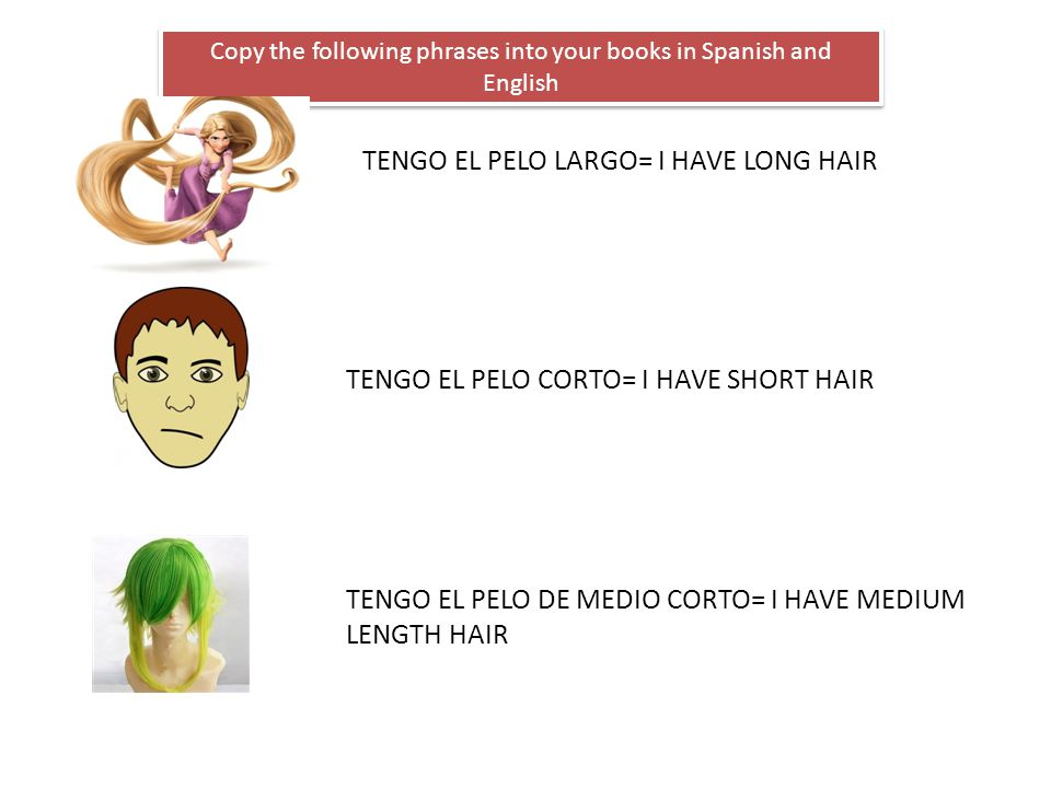Copy the following phrases into your books in Spanish and English