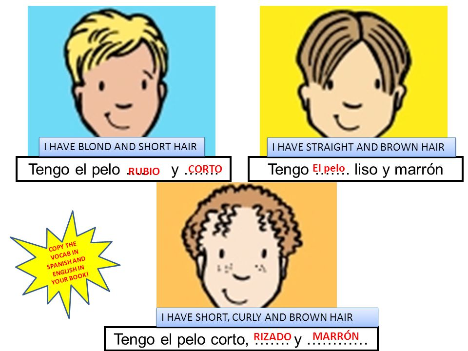 COPY THE VOCAB IN SPANISH AND ENGLISH IN YOUR BOOK!