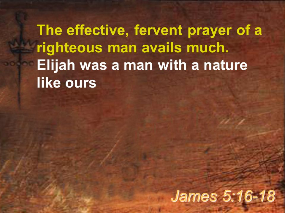 The effective, fervent prayer of a righteous man avails much